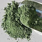 vert brentonico.jpg