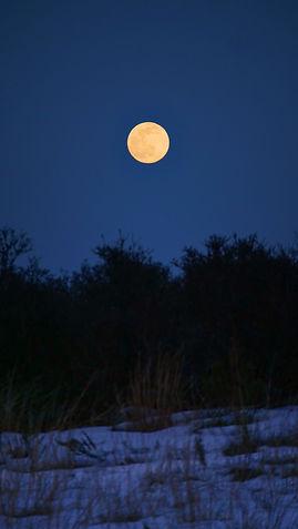 A full orange moon photo rising over Footbridge Beach in Ogunquit Maine