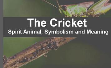 Omen: Crickets