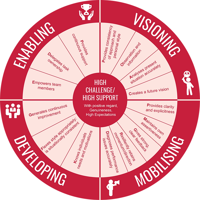 01-The Competency Wheel_Red.png