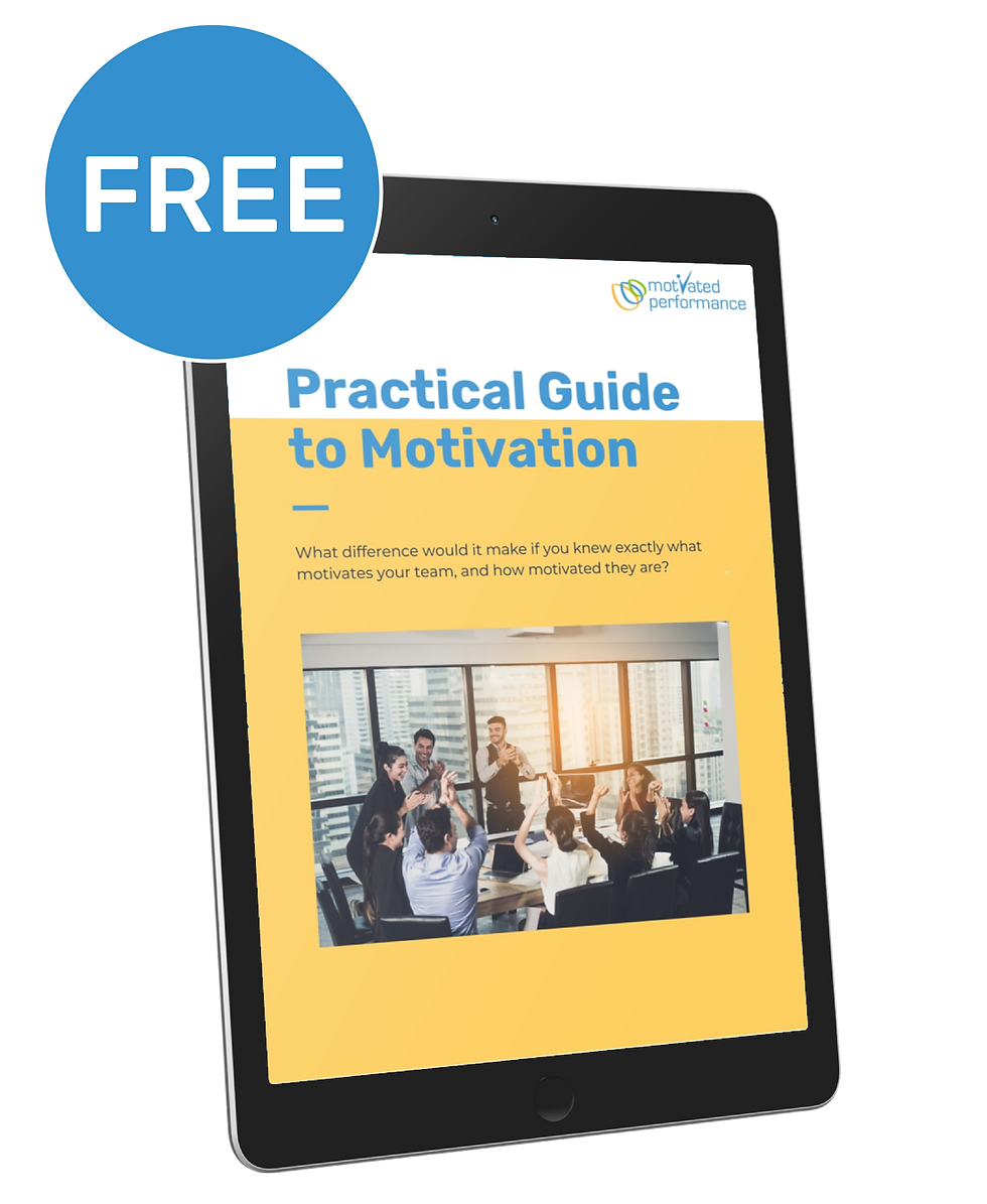 Practical Guide to Motivation - Motivational Maps for Human Reources