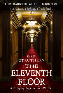 The Eleventh Floor by Shani Struthers