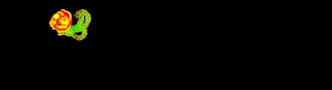 Chapeline_Logo_grand-modele_fond-transpa