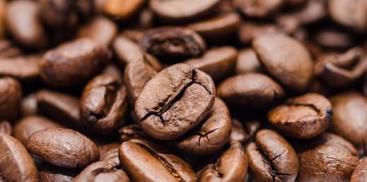 פולי קפה איכותיים