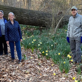 MCF's Earth Day Hike - May 1st 2pm - 3:30pm
