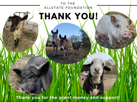 Thank You to our donors!