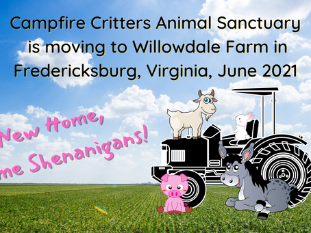 Campfire Critters Animal Sanctuary is moving!