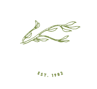 WILD& BEAUTIFUL THINGS ARE POSSIBLE, WILD SKY CREATIVE, BRANDING, GRAPHIC DESIGN, CONTENT CREATION, MONROE WASHINGTON, SKY VALLEY, MARKETING