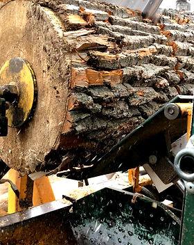 Splitwood_6288_edited.jpg