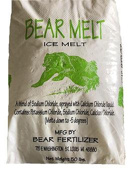 BearMelt.jpg