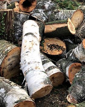 FirewoodLogs_8779_edited.jpg