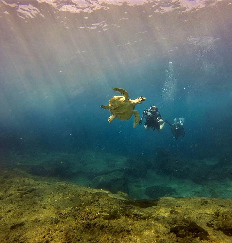 Dive Archeologic Great Basses