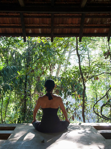 Yoga & Ayurvedha Roots at Samadhi