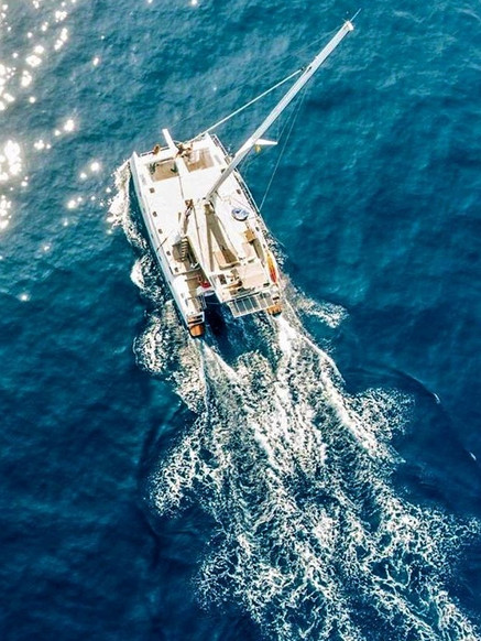 Catamaran Whale Watching Sailing East Giant's Loops