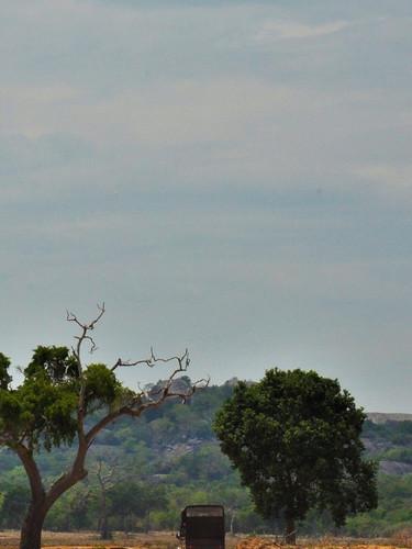 Kumana Wildlife Camping Incursion