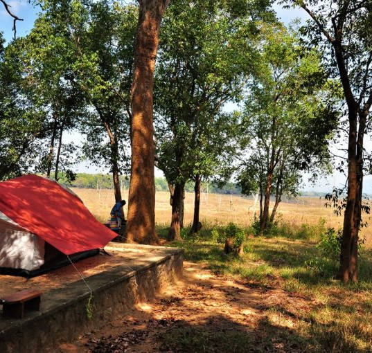 2D1N Camping in the Heart of Galoya NP