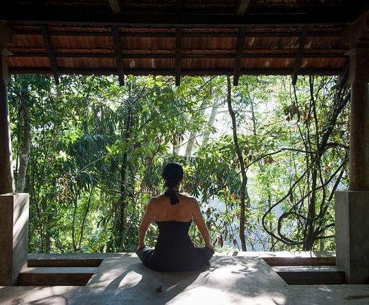 3D2N Yoga & Ayurvedha Roots at Samadhi