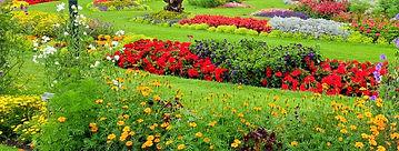 The Botanical Gardens.jpg