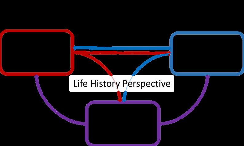 ResearchProgram.jpg.png