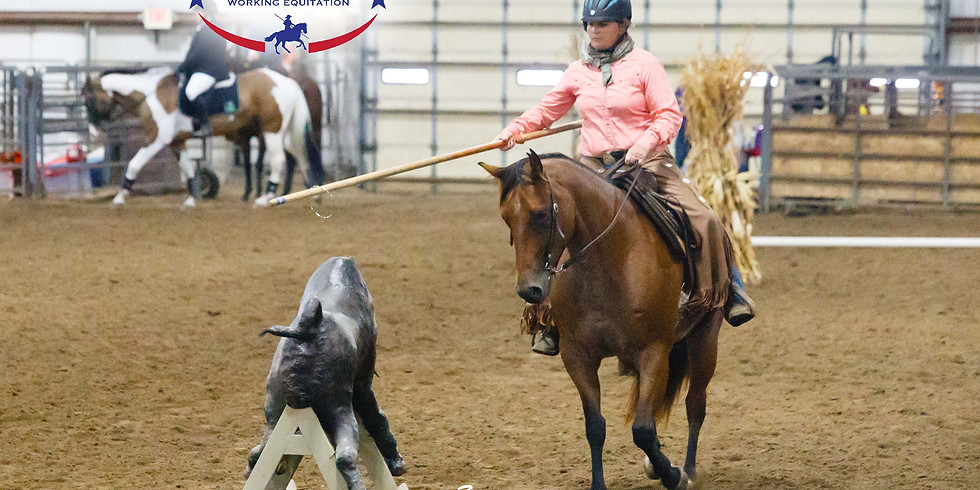 Working Equitation Clinic and Schooling Show