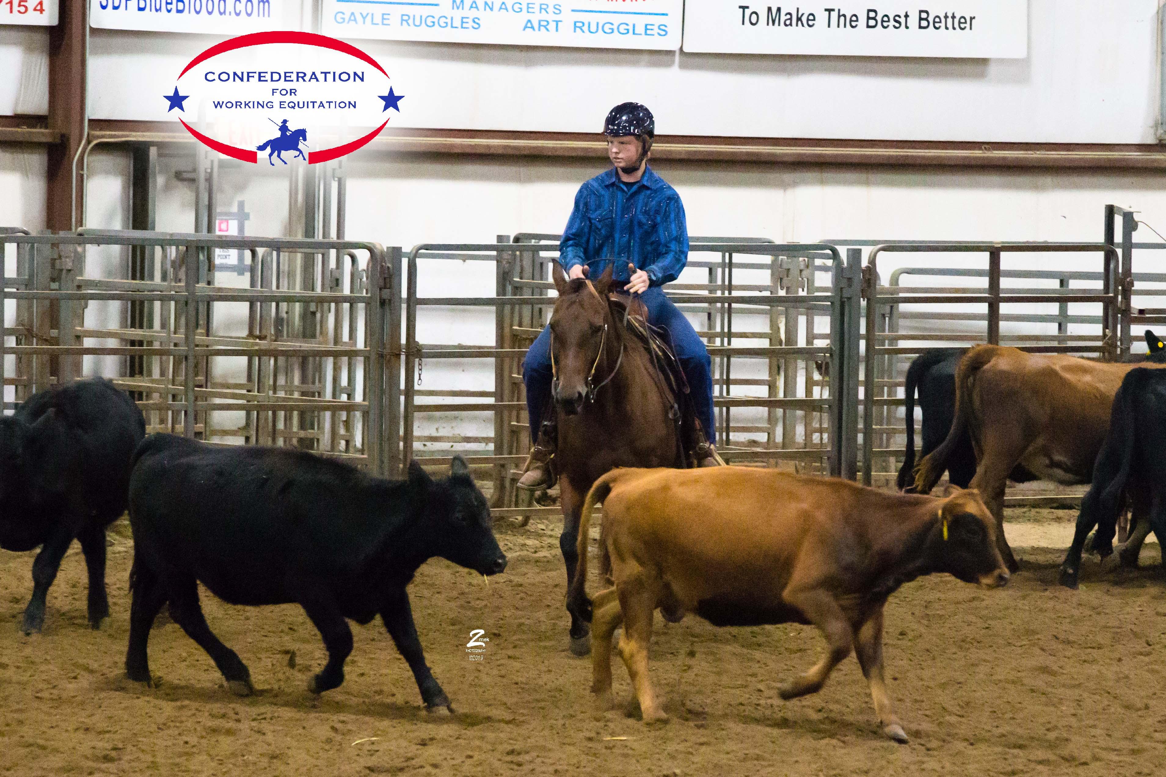 Warren-J-Cattle-0314-v1.jpg