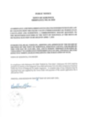 2020 Ordinances_Page_1.jpg