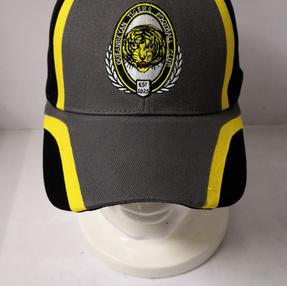 2020 Tigers Cap $15.00