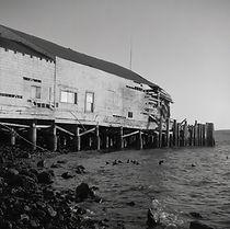 """""""Bodega Bay"""""""