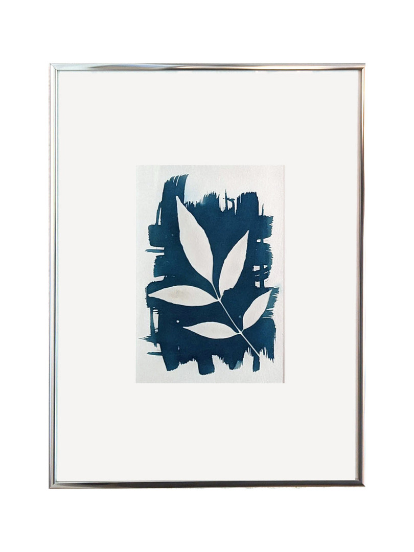"Brenna Hansen ""Ash Tree Cyanotype Photogram"" 2019"