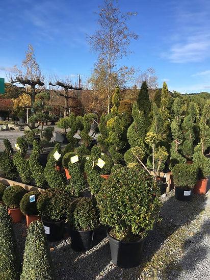 Planting Supplies