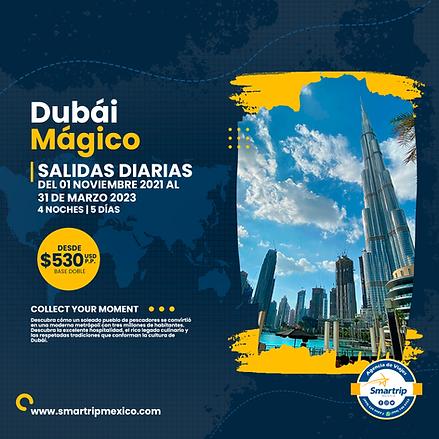 DUBAI MAGICO NOVIEMBRE 2021 A MARZO 2023.png