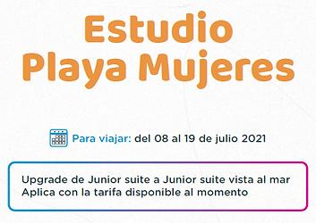 Estudio Playa Mujeres.png