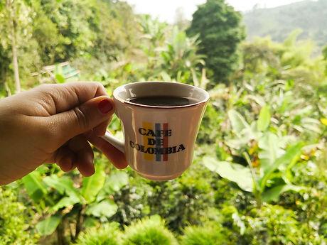 que-ver-eje-cafetero-colombia-salento-va