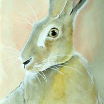 Peach Hare