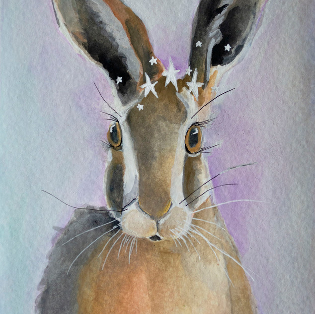 Solstice Hare