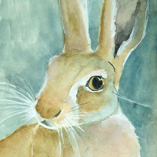 Foggy Hare