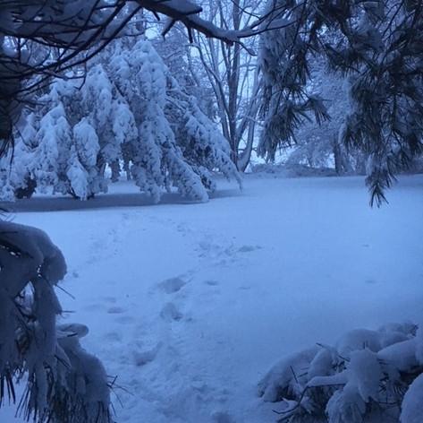 Snow Cavern