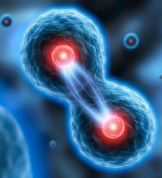 Telomere_vieillissement_cellules-souches