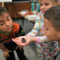Hays students hold cockroaches that will be used for Backyard Brains.jpg