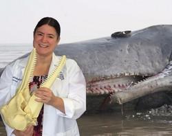 Dr. Joy Reidenberg (NGW, BBC, DISC)