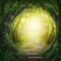 Road in magic dark forest.jpg