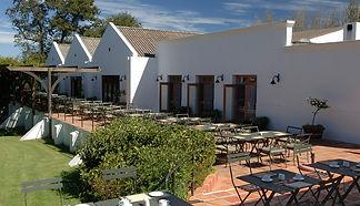 spier-wine-farm_10281584509.jpg
