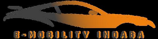 E-Mobility Indaba Logo.png