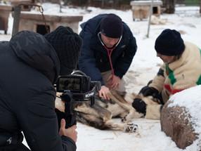 Série Original da CBC Arctic Vets Filmada com URSA Mini Pro 12K