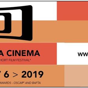 Festival Curta Cinema abre inscrições para seu Laboratório de Projetos