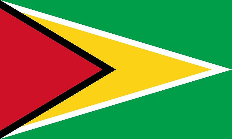 guyanese-flag-large.jpeg