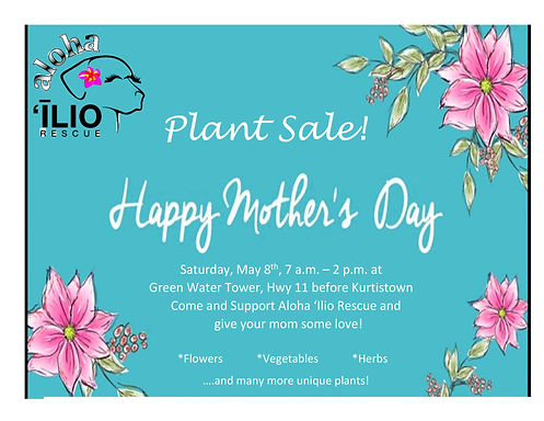 Mothers Day 1 Page Flyer-page-001.jpg
