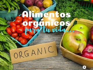 Alimentos orgánicos en tu vida.