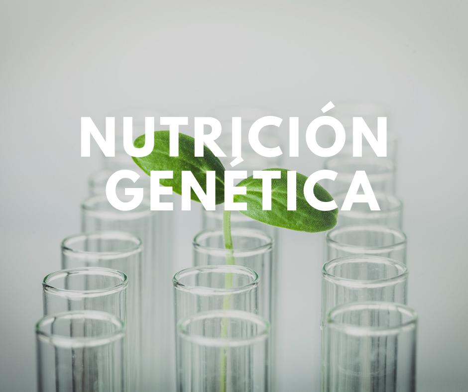 nutricion genetica