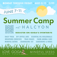 7-7-11_Summer-Camp-Halcyon.png